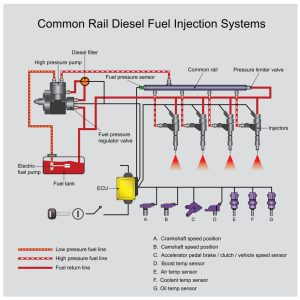 all common rail diesels